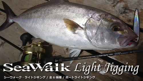 SWLJ-01-3-j.jpg